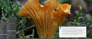 VirtualBox_Emmabuntus 1.01 Debian_06_09_2016_14_00_07