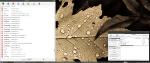 VirtualBox_Emmabuntus 1.01 Debian_06_09_2016_14_22_56