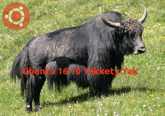 Ubuntu 16.10, la «force tranquille» revisitée !