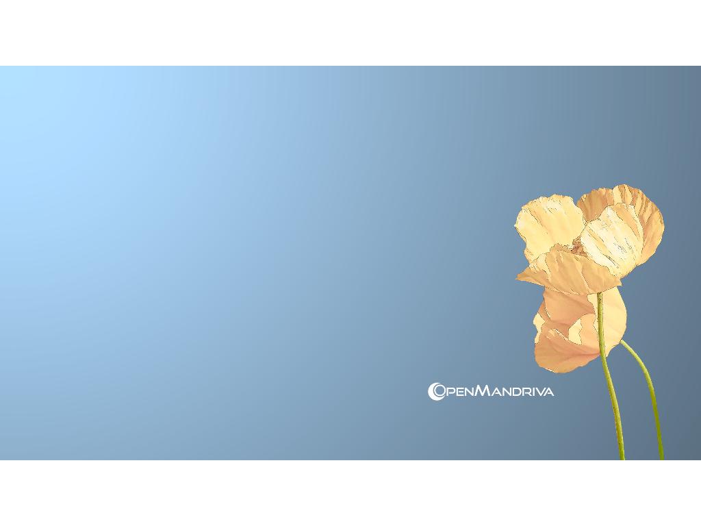 Open Mandriva Lx 3.01 : Plus qu'une Madeleine de Proust Numérique ?