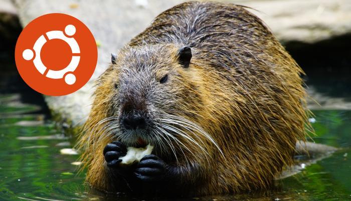 Ubuntu MATE 18.04 Bionic Beaver